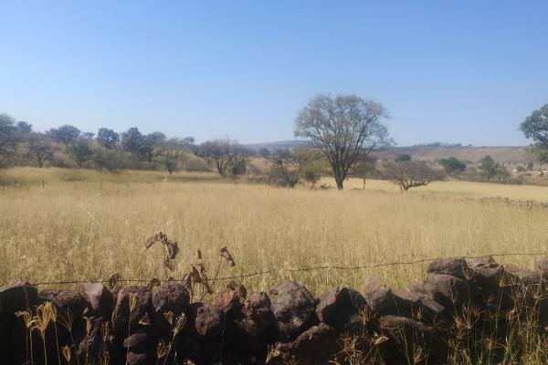 Foto de terreno habitacional en venta en carretera san isisdro mazatepec , santa cruz de las flores, tlajomulco de zúñiga, jalisco, 0 No. 06