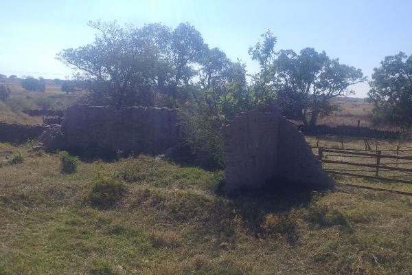 Foto de terreno habitacional en venta en carretera san isisdro mazatepec , santa cruz de las flores, tlajomulco de zúñiga, jalisco, 0 No. 08
