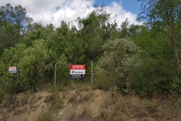 Foto de terreno habitacional en venta en carretera san mateo , san mateo, juárez, nuevo león, 7193316 No. 02