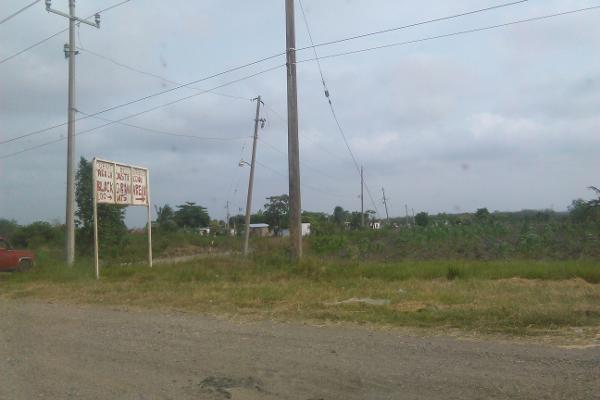 Foto de terreno comercial en venta en carretera tampico mante 0, benito juárez, altamira, tamaulipas, 2647668 No. 02