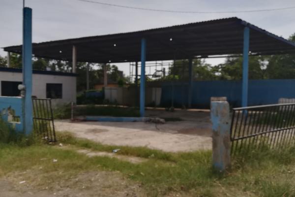 Foto de terreno habitacional en venta en carretera tampico-mante , melchor ocampo, altamira, tamaulipas, 5904249 No. 04