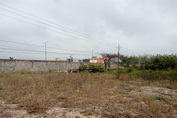 Foto de terreno comercial en venta en carretera tampico-mante , nuevo tampico, altamira, tamaulipas, 5759401 No. 02