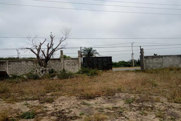 Foto de terreno comercial en venta en carretera tampico-mante , nuevo tampico, altamira, tamaulipas, 5759401 No. 03