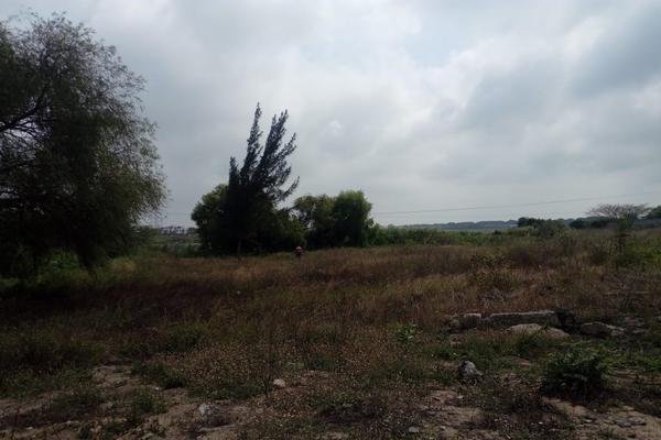 Foto de terreno comercial en venta en carretera tampico-mante , nuevo tampico, altamira, tamaulipas, 5759401 No. 07