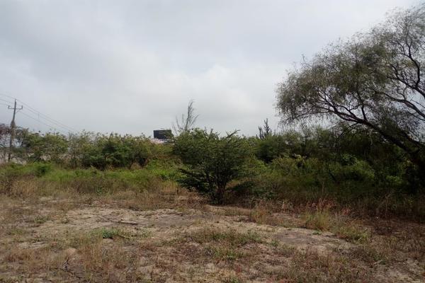 Foto de terreno comercial en venta en carretera tampico-mante , nuevo tampico, altamira, tamaulipas, 5759401 No. 08