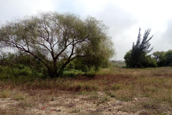Foto de terreno comercial en venta en carretera tampico-mante , nuevo tampico, altamira, tamaulipas, 5759401 No. 09