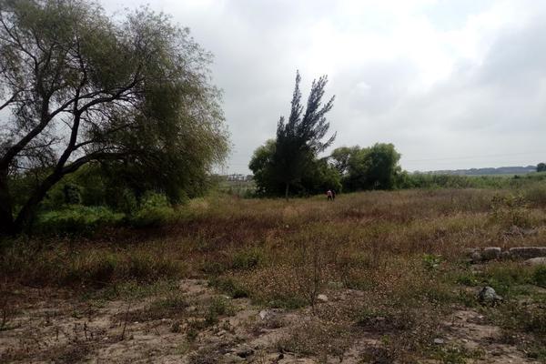 Foto de terreno comercial en venta en carretera tampico-mante , nuevo tampico, altamira, tamaulipas, 5759401 No. 10
