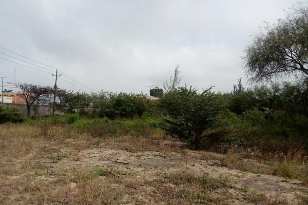Foto de terreno comercial en venta en carretera tampico-mante , nuevo tampico, altamira, tamaulipas, 5759401 No. 11