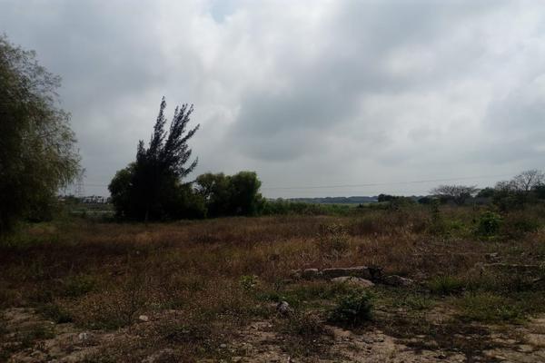 Foto de terreno comercial en venta en carretera tampico-mante , nuevo tampico, altamira, tamaulipas, 5759401 No. 12