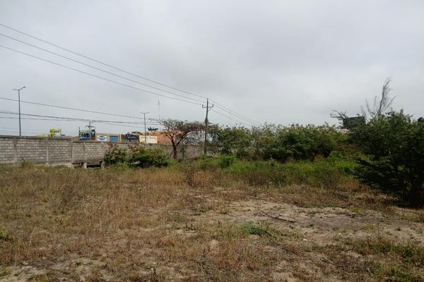 Foto de terreno comercial en venta en carretera tampico-mante , nuevo tampico, altamira, tamaulipas, 5759401 No. 13
