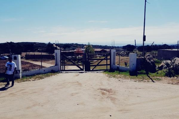 Foto de rancho en venta en carretera tecate mexicali kilometro 109 rancho la cienega kilometro 109 , loma tova, tecate, baja california, 6178644 No. 20