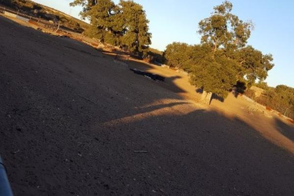 Foto de rancho en venta en carretera tecate mexicali kilometro 109 rancho la cienega kilometro 109 , loma tova, tecate, baja california, 6178644 No. 22