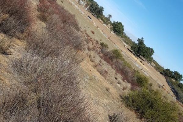 Foto de rancho en venta en carretera tecate mexicali kilometro 109 rancho la cienega kilometro 109 , loma tova, tecate, baja california, 6178644 No. 24