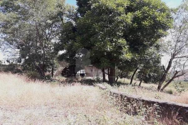 Foto de terreno comercial en venta en carretera tehuixtla-chisco , tilzapotla, puente de ixtla, morelos, 0 No. 04