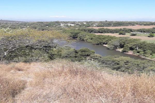 Foto de terreno comercial en venta en carretera tehuixtla-chisco , tilzapotla, puente de ixtla, morelos, 0 No. 06