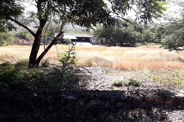 Foto de terreno comercial en venta en carretera tehuixtla-chisco , tilzapotla, puente de ixtla, morelos, 0 No. 07