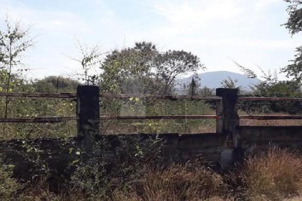 Foto de terreno comercial en venta en carretera tehuixtla-chisco , tilzapotla, puente de ixtla, morelos, 0 No. 08