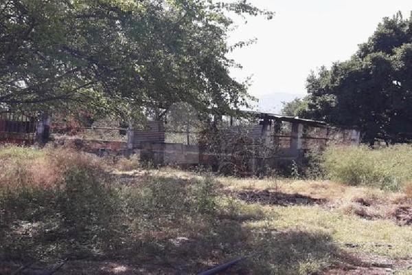 Foto de terreno comercial en venta en carretera tehuixtla-chisco , tilzapotla, puente de ixtla, morelos, 0 No. 09