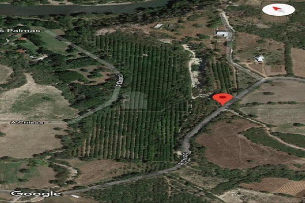 Foto de terreno comercial en venta en carretera tehuixtla-chisco , tilzapotla, puente de ixtla, morelos, 0 No. 11