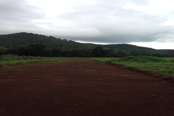 Foto de terreno habitacional en venta en carretera teopisca comitán, entrando a mano izquierda a 251m. predio la campana , san josé, teopisca, chiapas, 7534249 No. 05
