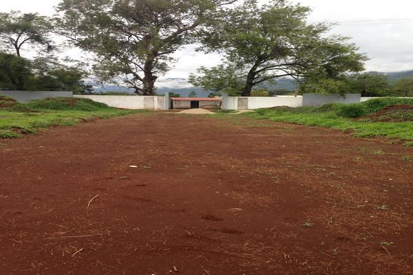 Foto de terreno habitacional en venta en carretera teopisca comitán, entrando a mano izquierda a 251m. predio la campana , san josé, teopisca, chiapas, 7534249 No. 06