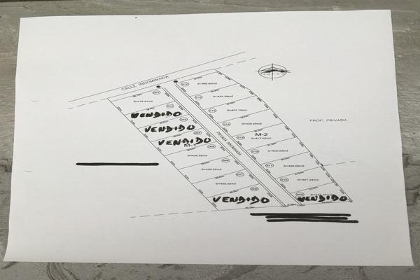 Foto de terreno habitacional en venta en carretera teopisca comitán, entrando a mano izquierda a 251m. predio la campana , san josé, teopisca, chiapas, 7534249 No. 10