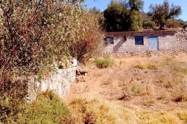 Foto de terreno habitacional en venta en carretera tepeapulco-pachuca. , el jihuingo, tepeapulco, hidalgo, 3193462 No. 08
