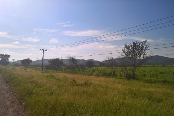 Foto de terreno habitacional en venta en carretera tepic - mazatlan kilometro 276 , anáhuac, mazatlán, sinaloa, 3197896 No. 01