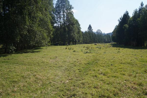 Foto de rancho en venta en carretera toluca-valle de bravo , los saúcos, valle de bravo, méxico, 5723807 No. 01