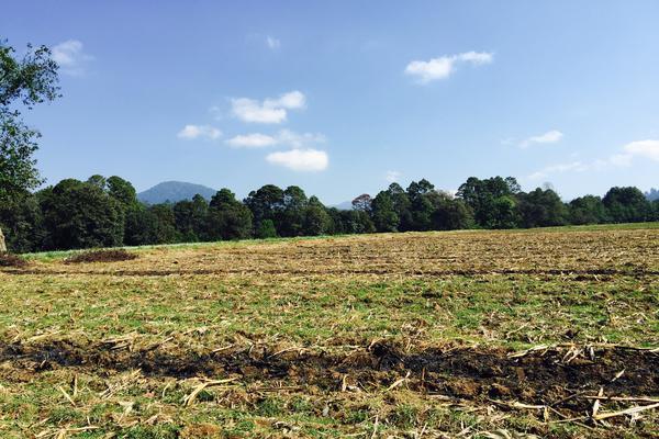 Foto de rancho en venta en carretera toluca-valle de bravo , los saúcos, valle de bravo, méxico, 5723807 No. 03