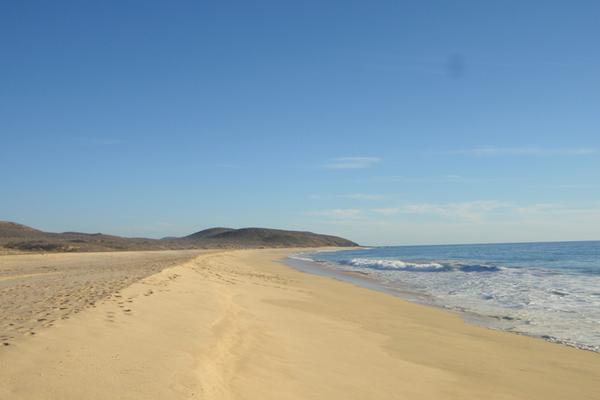 Foto de terreno industrial en venta en carretera transpeninsular , agua amarga, la paz, baja california sur, 5890707 No. 02