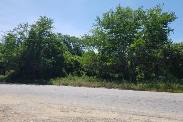 Foto de terreno industrial en venta en carretera tuncingo el salto 0, el salto, acapulco de juárez, guerrero, 5667483 No. 06