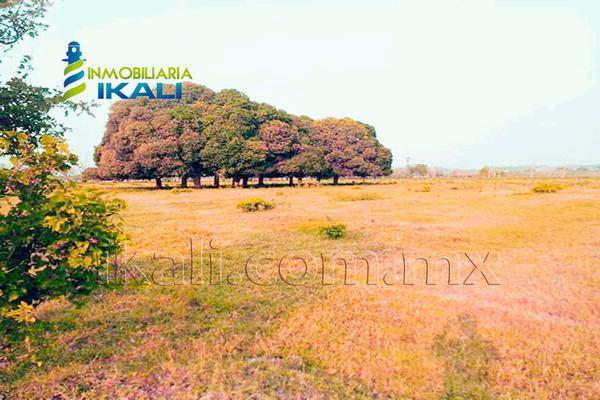Foto de terreno comercial en venta en carretera tuxpan-poza rica , santiago de la peña, tuxpan, veracruz de ignacio de la llave, 5871339 No. 06