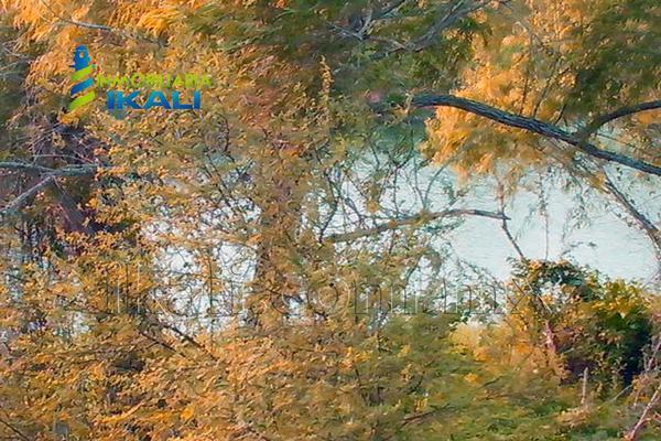 Foto de terreno comercial en venta en carretera tuxpan-poza rica , santiago de la peña, tuxpan, veracruz de ignacio de la llave, 5871339 No. 10