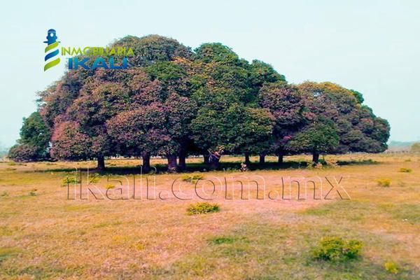 Foto de terreno comercial en venta en carretera tuxpan-poza rica , santiago de la peña, tuxpan, veracruz de ignacio de la llave, 5871339 No. 16