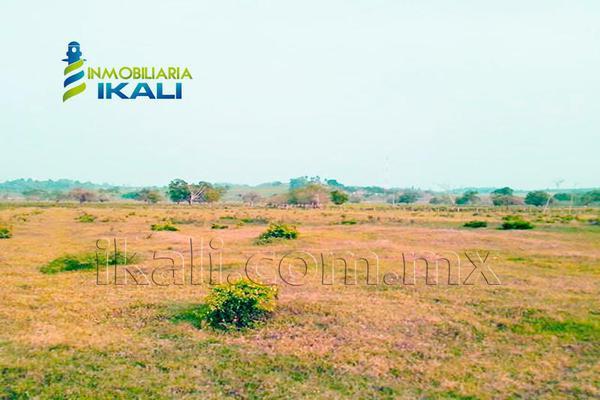Foto de terreno comercial en venta en carretera tuxpan-poza rica , santiago de la peña, tuxpan, veracruz de ignacio de la llave, 5871339 No. 17