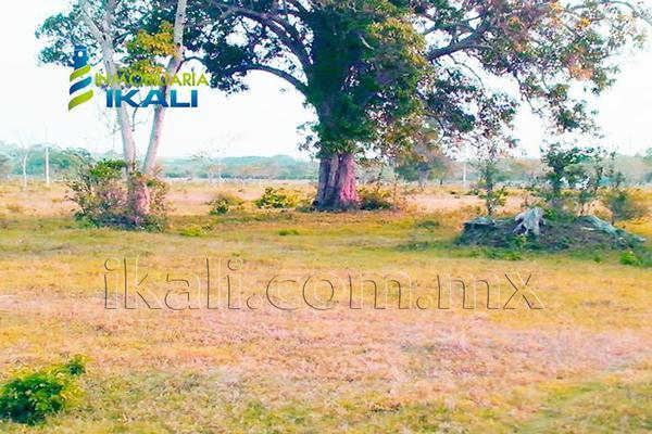 Foto de terreno comercial en venta en carretera tuxpan-poza rica , santiago de la peña, tuxpan, veracruz de ignacio de la llave, 5871339 No. 20