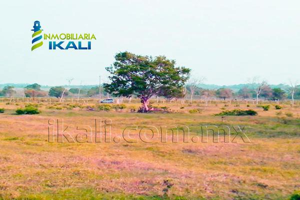 Foto de terreno comercial en venta en carretera tuxpan-poza rica , santiago de la peña, tuxpan, veracruz de ignacio de la llave, 5871339 No. 21