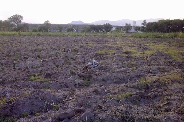 Foto de terreno habitacional en venta en carretera villa de reyes-san felipe 0, villa de reyes centro, villa de reyes, san luis potosí, 2649822 No. 01