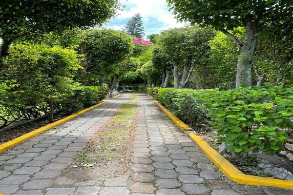 Foto de terreno habitacional en venta en carretera yautepec ticuman , san carlos yautepec centro, san carlos yautepec, oaxaca, 0 No. 04