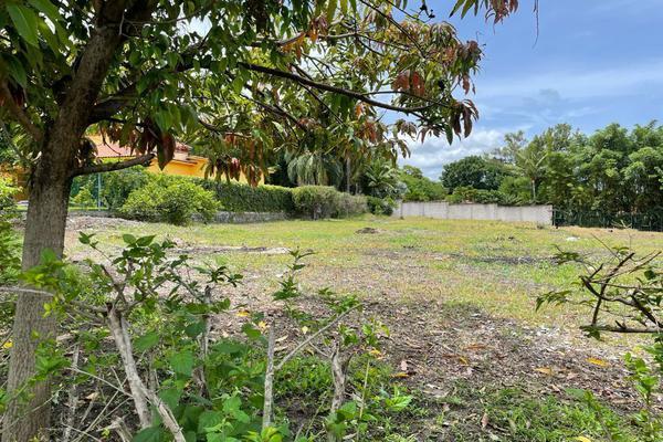 Foto de terreno habitacional en venta en carretera yautepec ticuman , san carlos yautepec centro, san carlos yautepec, oaxaca, 0 No. 06