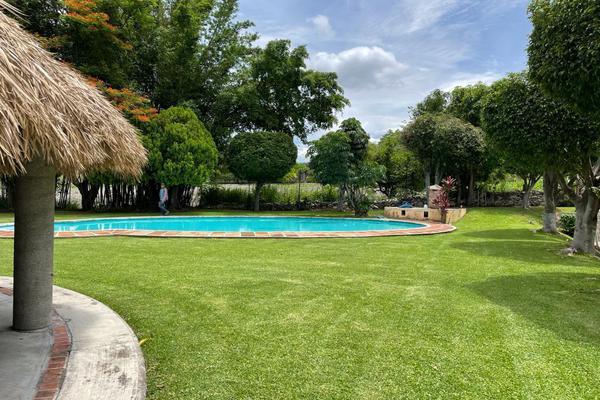 Foto de terreno habitacional en venta en carretera yautepec ticuman , san carlos yautepec centro, san carlos yautepec, oaxaca, 0 No. 07