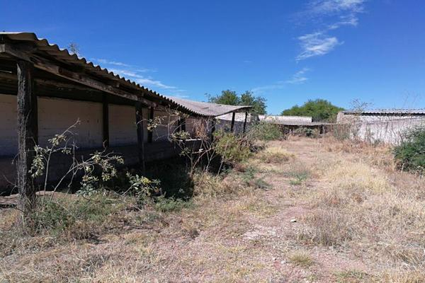 Foto de rancho en venta en carretera zacatecas-jeréz kilometro 47.5 kilometro 47.5, montecillo, jerez, zacatecas, 5966900 No. 03