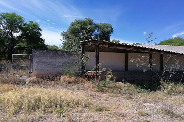 Foto de rancho en venta en carretera zacatecas-jeréz kilometro 47.5 kilometro 47.5, montecillo, jerez, zacatecas, 5966900 No. 05