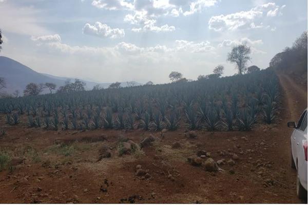 Foto de rancho en venta en carretera zapotlanejo atotonilco el alto , zapotlanejo, zapotlanejo, jalisco, 13646463 No. 04