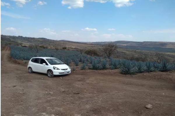 Foto de rancho en venta en carretera zapotlanejo atotonilco el alto , zapotlanejo, zapotlanejo, jalisco, 13646463 No. 15