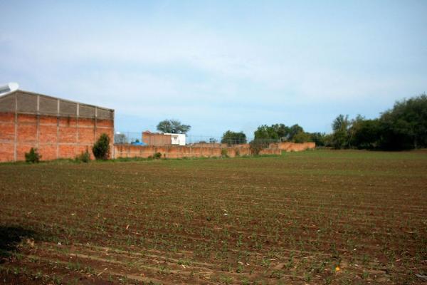 Foto de terreno comercial en venta en carretere guadalajarza-saltillo kilometro 45 , ixtlahuacan del rio, ixtlahuacán del río, jalisco, 12764316 No. 07
