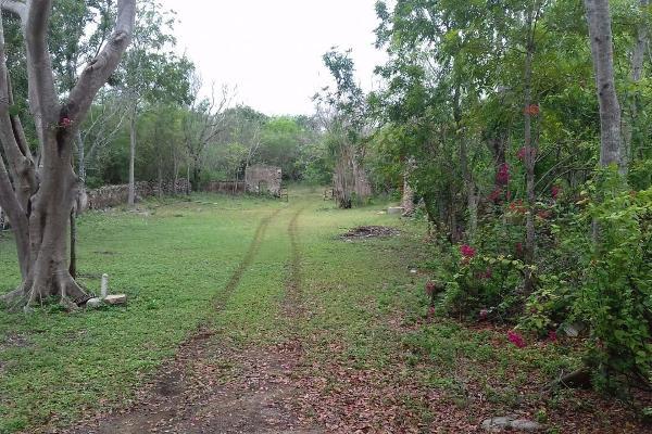 Foto de casa en venta en carreterra , chiquila, tecoh, yucatán, 0 No. 02