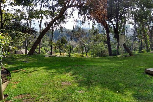 Foto de departamento en renta en carretra méxico-toluca , el yaqui, cuajimalpa de morelos, df / cdmx, 10260385 No. 10