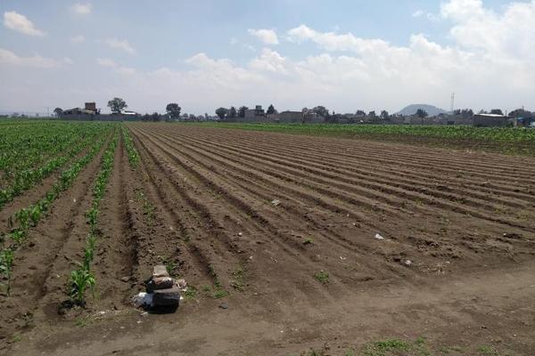 Foto de terreno habitacional en venta en carril sin nombre s/n , san pablo atlazalpan, chalco, méxico, 15887464 No. 03